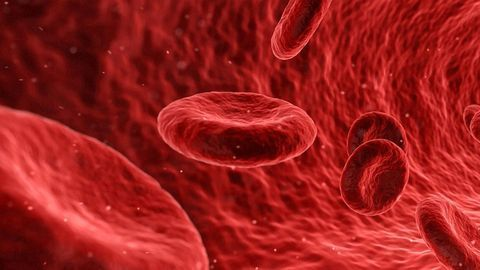High Levels of Two Hormones in the Blood Increase Prostate Cancer Risk
