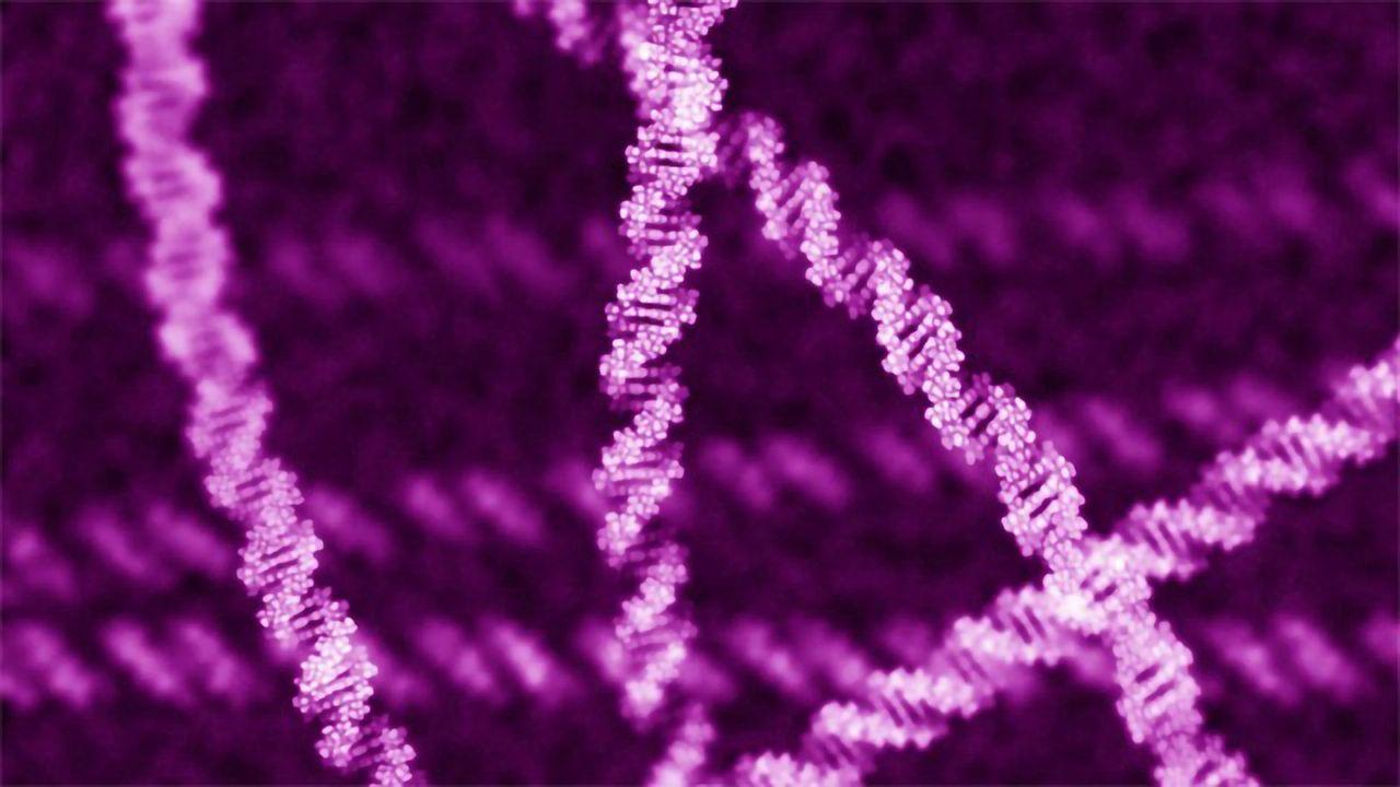 Open-source Database Enhances Genomics Research Collaboration