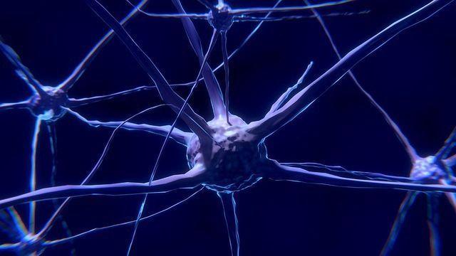 "Derailing the ""Runaway Train"" of Parkinson's Disease"