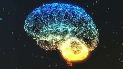 CorTechs Labs Enters Phase 2 of NIH Grant to Automate the Diagnosis and Prediction of Alzheimer's
