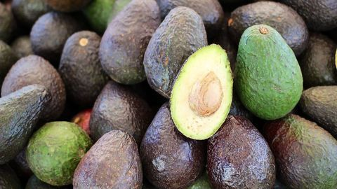 Exploring Cell Mechanics – From Ripe Avocados to Sepsis Diagnosis