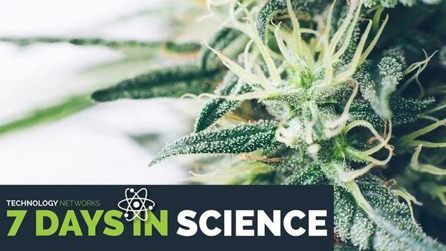 7 Days in Science – November 15, 2019