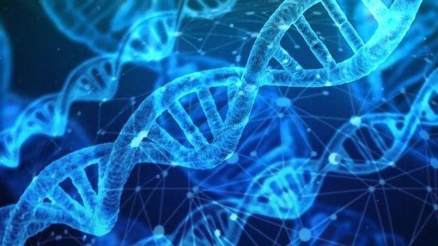 Investigating Chromosome Conformation With Pore-C