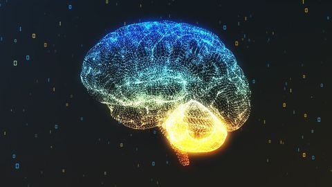 Lithium Reverses Radiation Damage After Brain Tumor Treatment