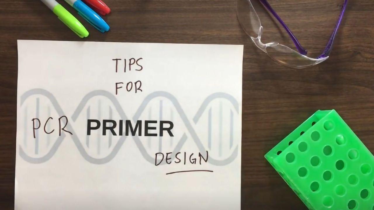Tips for PCR primer design