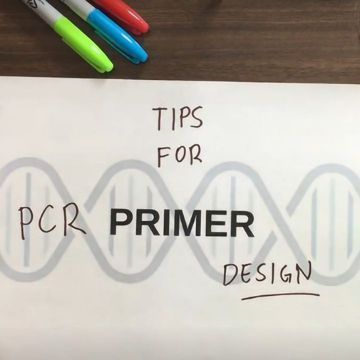 Tips for PCR primer design