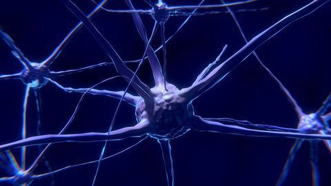 One Woman's Genes Could Open Up the Door for Alzheimer's Disease Therapies