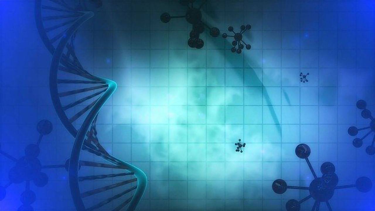 Calculating the Spatial Pattern of Gene Expression for the Entire Genome