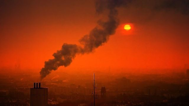 New Study Shows Connection Between Air Pollution,  Alzheimer's-like Brain Changes