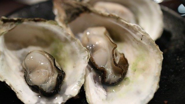 Foodie Oyster Tradition Is Over 4,000 Years Old