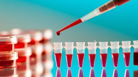 Advances in PCR Diagnostics for Cancer and Medical Mycology
