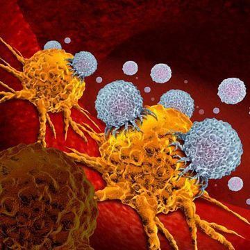 Future Cancer Immunotherapy Treatments Could Be Administered by a Pill