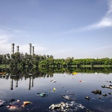 Urgent Improvements To Reduce Pharmaceutical Pollution Needed
