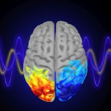 Teaching People To Control Their Brainwaves Can Boost Their Attention, Too