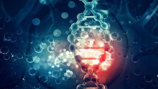 """""""Junk DNA"""" Affects Inherited Risk of Cancer"""