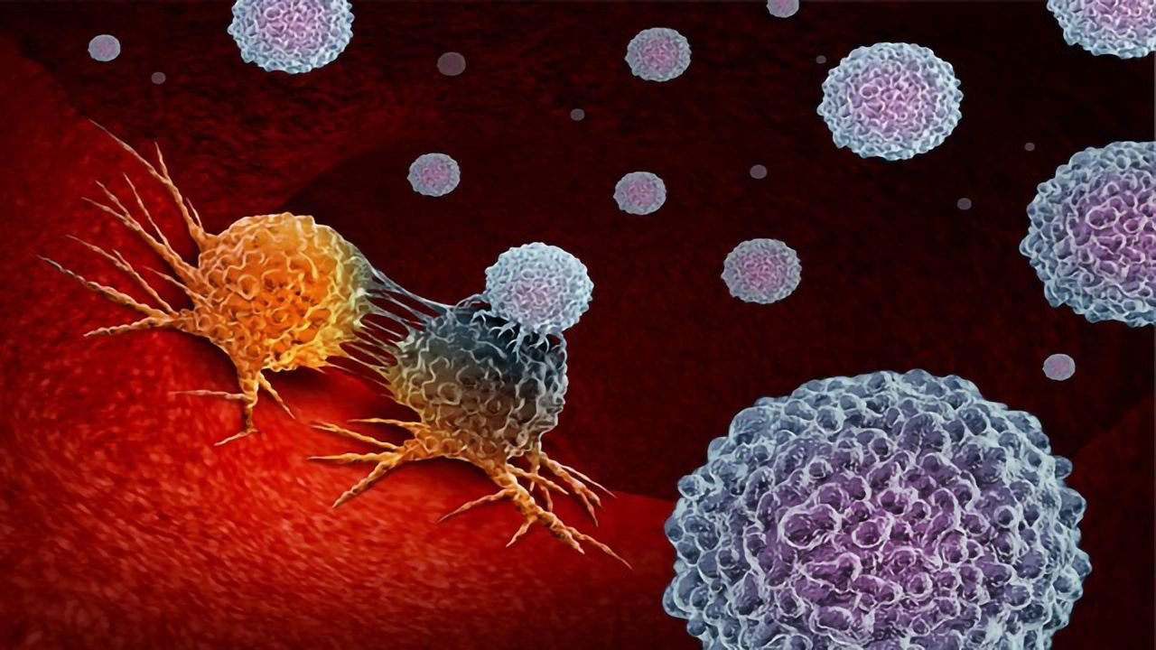Trial Suggests Immunotherapy Is Superior to Chemotherapy in Some Children With Relapsed Leukemia