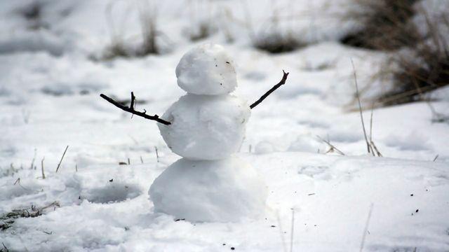 Mitosis in a Winter Wonderland