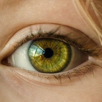 The Role of Genetics in Sight and Preventing Blinding Eye Diseases