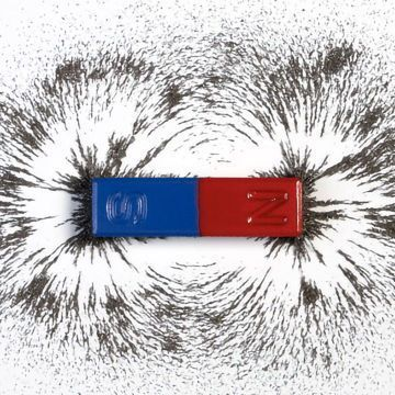 Mind Over Magnet: Cryptochrome Proteins Enable Magnetic Brain Repair