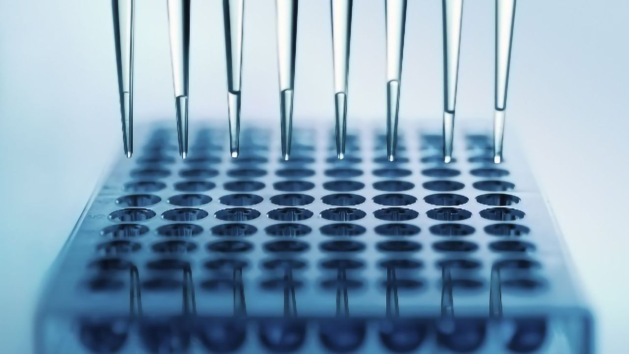 Edpidarex Exeed Aims To Advance Innovation in Drug Discovery