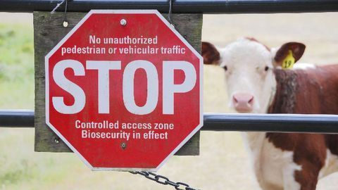 Biosecurity – From the Horse's Mouth
