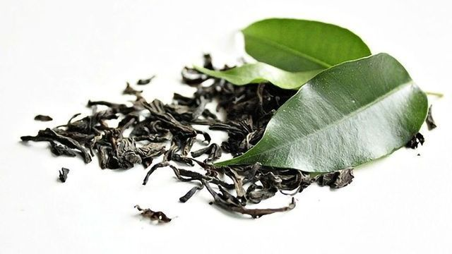 Antioxidant Found in Green Tea Plant May Help Tackle Tuberculosis