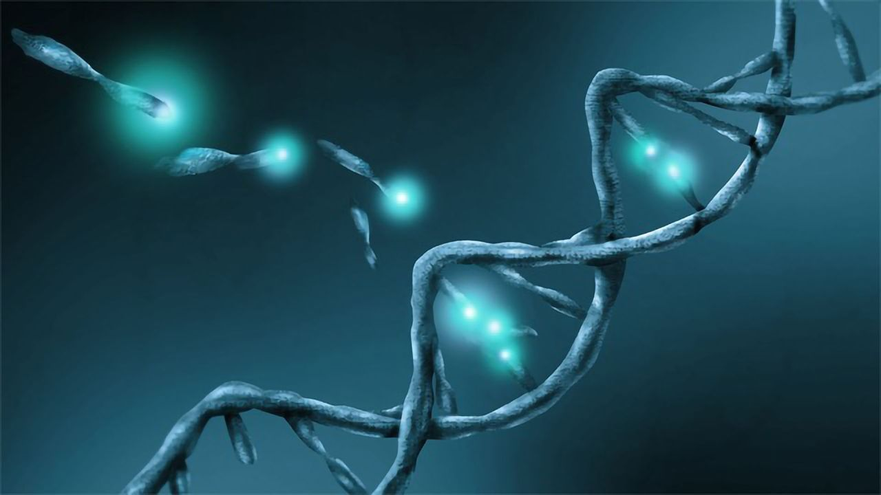 New Kit Aims For Efficient Isolation of Circulating Cell Free DNA