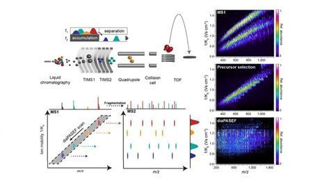 diaPASEF: Toward the Ideal Mass Analyzer with Data-Independent Acquisition and Parallel Accumulation