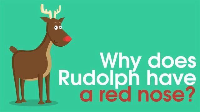 圣诞节的科学:鲁道夫的红鼻子