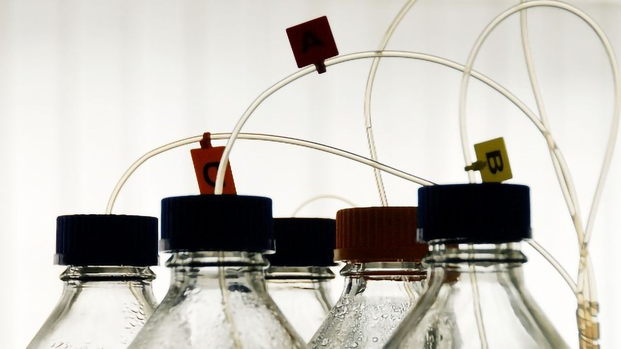 Fostering Compatibility Among Chromatography Instrumentation and Data Systems