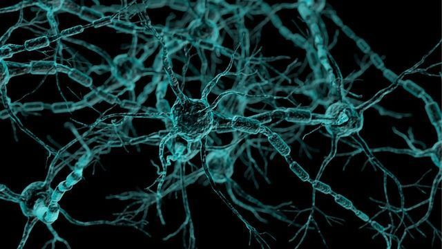 Compounds Protect Brain Cells From Stresses Linked to Alzheimer's