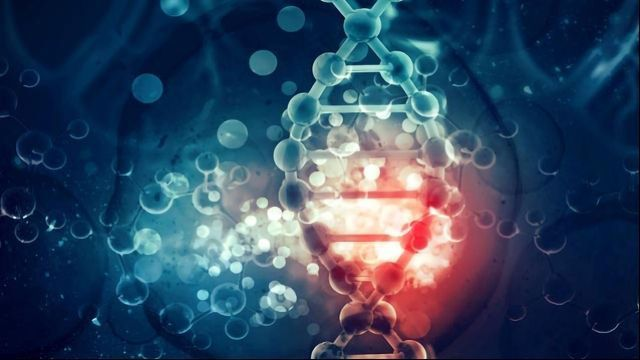 Genetic Defect in Prostate Cancer Paves Path to New Anti-cancer Drugs