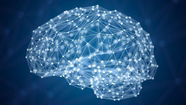 Connecting Fear And Reward In The Mammalian Brain