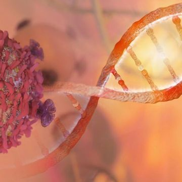 """Targeting """"DNA Rewiring"""" To Reduce Breast Cancer Relapse"""