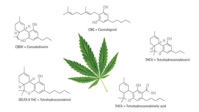 Does Syringe Filtration Impact Recovery of Cannabinoids Prior to Potency Testing?