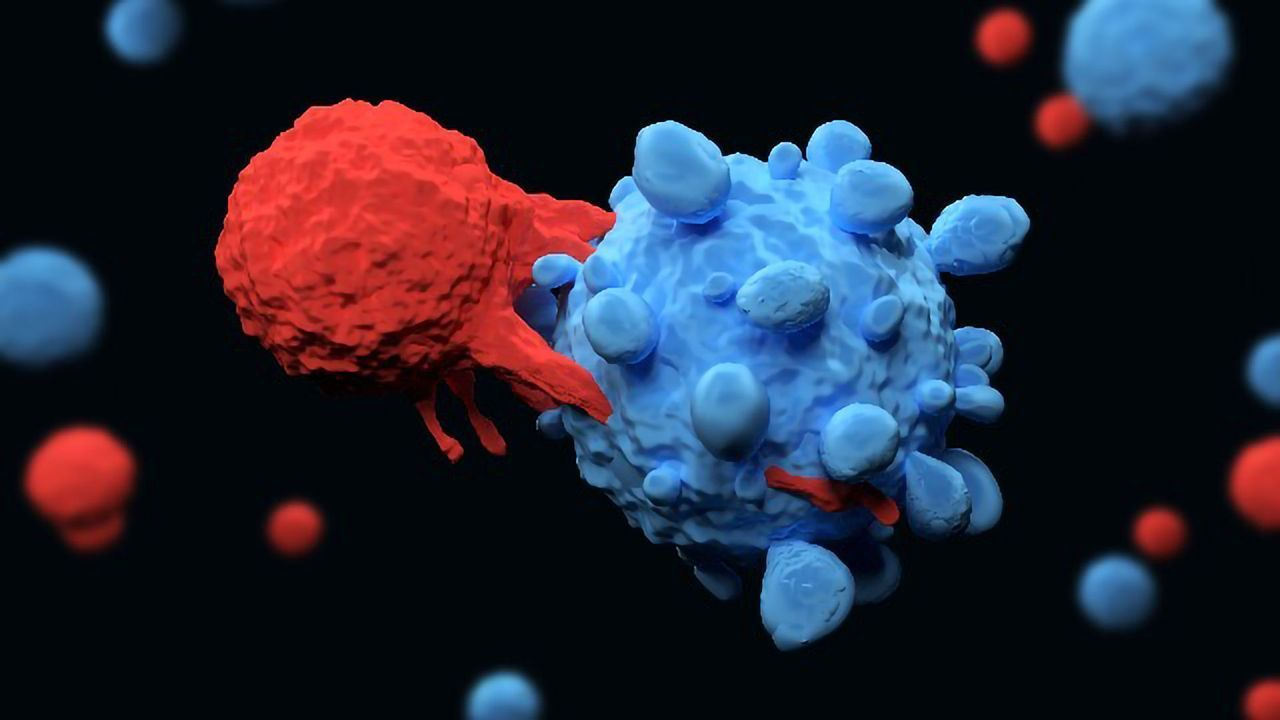 """Newly Discovered T Cell Could Represent Dawn of """"Universal"""" Cancer Therapy"""