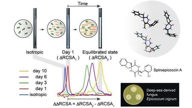 New NMR-based Method Simplifies Natural Product Structural Analysis