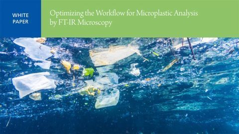 Optimizing the Workflow for Microplastic Analysis by FT-IR Microscopy