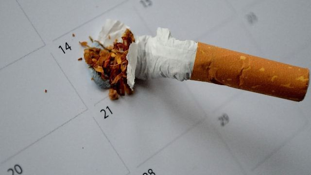 Never Too Late To Quit: Protective Cells Could Cut Risk of Lung Cancer for Ex-smokers