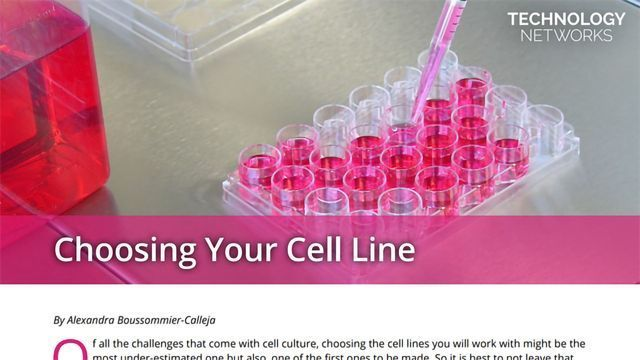 Choosing Your Cell Line
