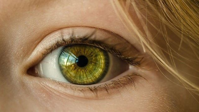 """Protective Protein Is """"Guardian Angel"""" of the Eye"""