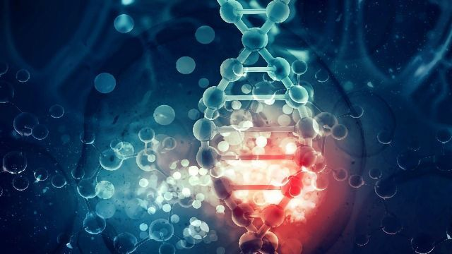 Fundamental Discovery About How Gene Activity Is Regulated
