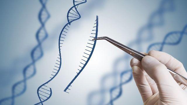 Applications of CRISPR Technology