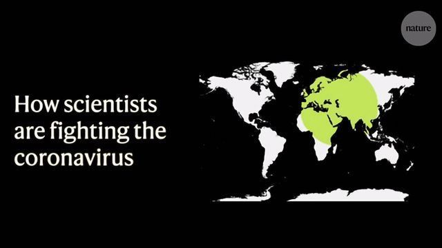 How Scientists Are Fighting the Coronavirus: A Three Minute Guide