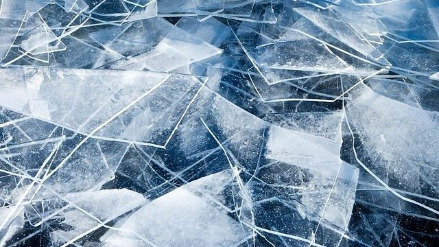 Saving Cells From Ice Damage