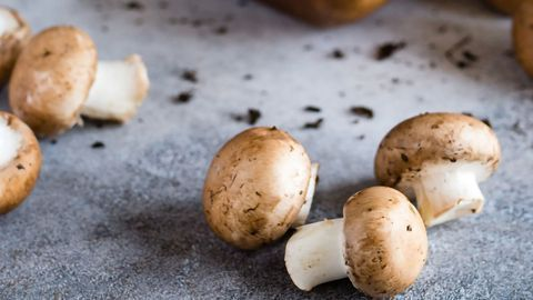 """Mushroom Antioxidant May Relieve Features of """"Pregnancy Hypertension"""""""