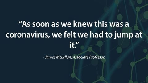 New Coronavirus Insights Mark Important Step Towards Vaccine