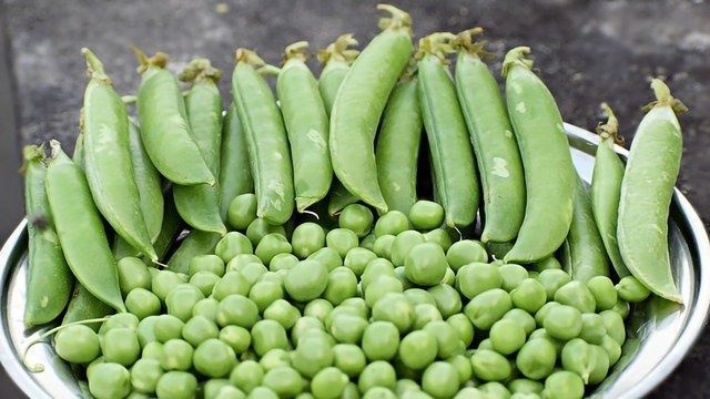 Peas an Unlikely Hero In Gin World-first!