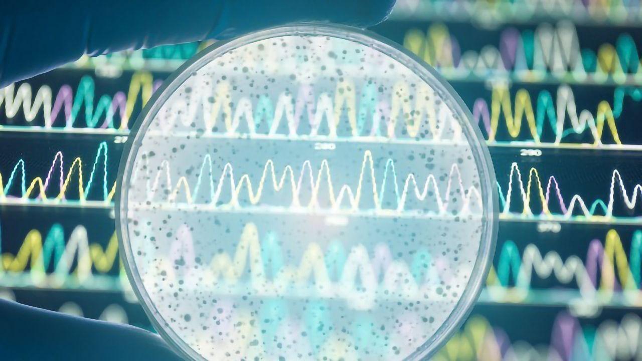 Advances in Microbial Genomics