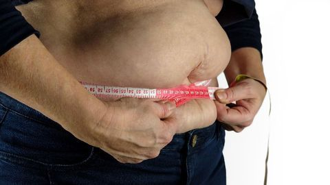 The Effects of Obesity Mirror Those of Aging